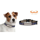 NFL Houston Texans Reflective Dog Collar LG