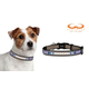NFL New York Giants Reflective Dog Collar LG