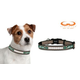 NFL New York Jets Reflective Dog Collar LG