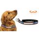 NCAA Kentucky Wildcats Leather Dog Collar LG