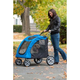 Pet Gear Expedition Pet Stroller Blue Sky
