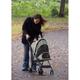 Pet Gear Travel Lite Pet Stroller Sage
