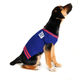 New York Giants Dog Sweater Large