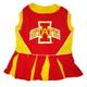 NCAA Iowa State Cheerleader Dog Dress Medium