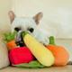 PLAY Garden Fresh Plush Dog Toy Gift Set