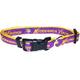 Minnesota Vikings Gold Trim Dog Collar Medium