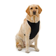 Kumfy Tailz Warming Mesh Dog Harness Large Blue