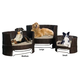 Refined Canine Dog Day Bed w/Outdoor Cushion LG