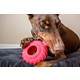 Jolly Pets Jolly Tuff Treader Dog Toy 6in