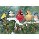 Cardinals and Friends Puzzle