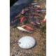 KH Mfg Perfect Climate Submersible Pond De Icer