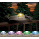 API Aurora Lighted Water Wiggler