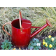 Griffith Creek Red Deluxe Watering Can 1 GL