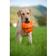 MajorDog Orange Rubber Ball Fetch Dog Toy