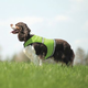 Insect Shield Protective Dog Safety Vest XXL Orang