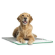 Pet Therapeutics MagnaPetic Relief Pet Pad