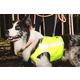 Hurtta Polar Visibility Dog Vest XXL Lupine