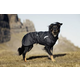 Hurtta Summit Parka Dog Coat 35 Raven