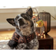 Hugglehounds Skull & Bones Dog Scarf Medium