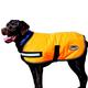 WeatherBeeta Reflective Dog Parka 300D 32 Orange