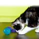 KONG Laser Craze Cat Toy