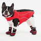Performance Fleece Jacket for Dogs X Small in Red