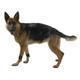 Kruuse Rehab Dog Weight Cuffs X-Large