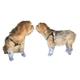 Multi Use Veterinary Dog Booties 8pk 3XLarge