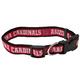 Arizona Cardinals Ribbon Dog Collar Small