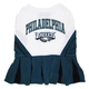 Philadelphia Eagles Cheerleader Dog Dress XSmall