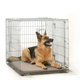 One For Pets Orthopedic Air Crate Dog Mat 6000