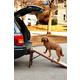 Pet Gear Free Standing Pet Ramp