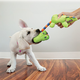KONG Stretchezz Tugga Dog Toy Small Otter
