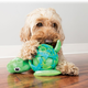 KONG Sea Shells Dog Toy Medium/Large Turtle