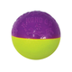 KONG Iconix Ball Dog Toy Large