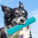 goDog RhinoPlay Vexo Dog Toy Regular