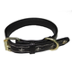 Halo Fleur-de-lis Leather Dog Collar Small
