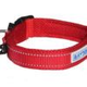 Baydog Tampa Dog Collar Large Red