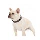 Halo Santa Hat Leather Dog Collar Small