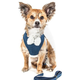 Pet Life Pom Draper Dog Harness/Leash XSmall