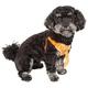 Pet Life Bonatied Dog Harness XSmall Orange
