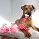 KONG Stretchezz Curlz Medium Dog Toy Parrot