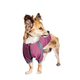 Helios Eboneflow Dog Yoga Tee XSmall Dark Pink