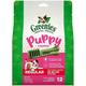 Greenies Puppy Dental Chew Treat Regular 12oz