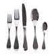 Guy Degrenne Isatis 5 piece Cutlery