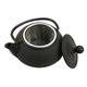 Nailhead Japanese Design Cast Iron Tea Pot