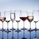 Fortessa Wine Glass Collection by Schott Zwiesel
