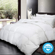 Empress Pillow and Duvet Collection