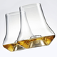 Set of 2 Whisky Glasses by Trudeau
