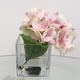 Pink Hydrangea in Square Glass Vase by Gino Signature